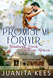 Promise Me Forever (Bindarra Creek A Town Reborn Book 8)