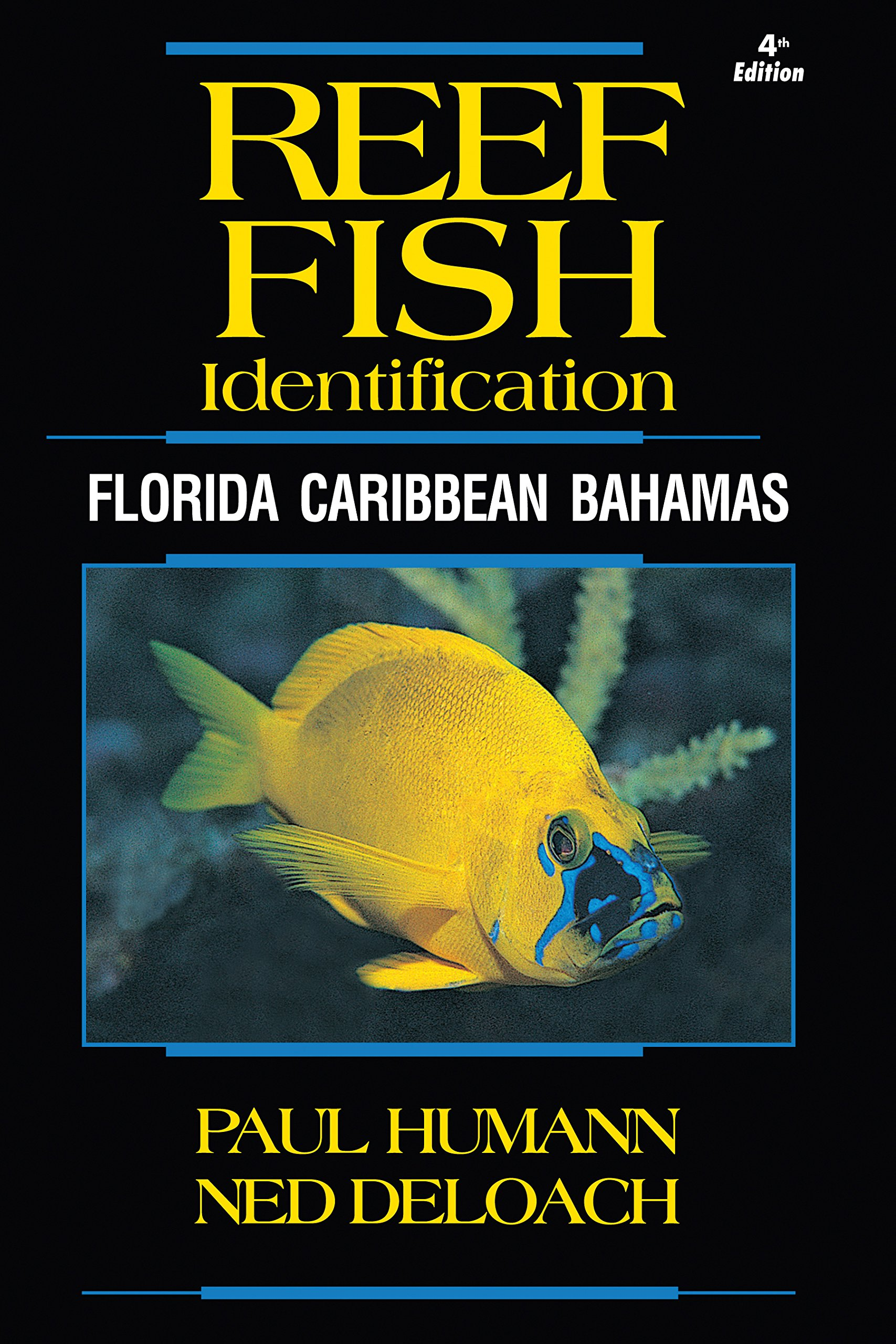 Reef Fish Identification - Florida Caribbean Bahamas - 4th Edition (Reef Set) by New World Publications