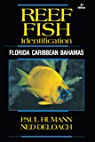 Reef Fish Identification: Florida Caribbean Bahamas (Reef Set)