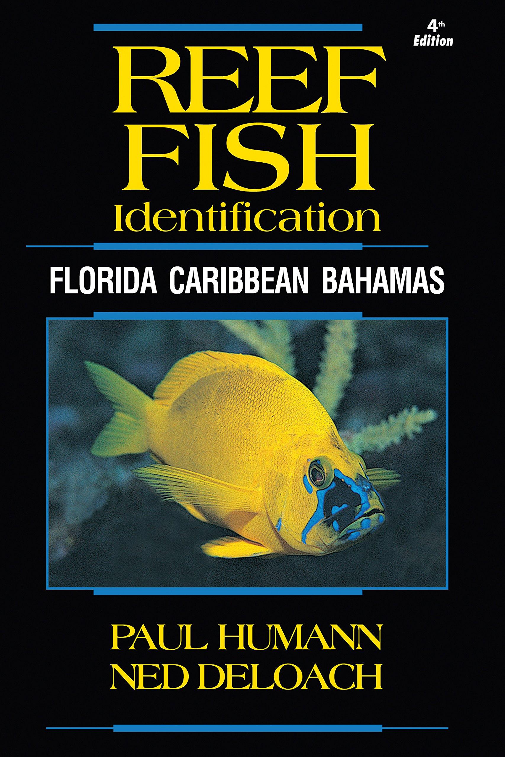 Reef Fish Identification Florida Caribbean product image