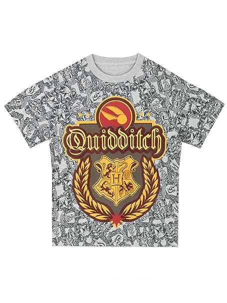 a2704f13e HARRY POTTER - Camiseta para niño Quidditch  Amazon.es  Ropa y accesorios