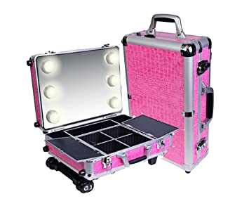 Amazon.com : SHANY Mini Studio ToGo Makeup Case with Lights - Pink : Makeup Train Cases : Beauty