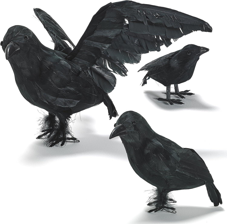 "One Small 5/"" Black Crow Bird Men/'s Halloween Prop Decoration Decor"