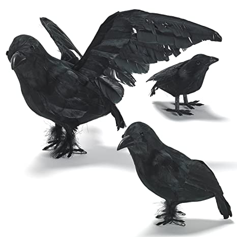 prextex halloween decoration realistic looking 3 pc birds black feathered crows halloween prop dcor