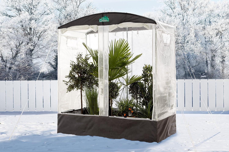 Bio Green Casa para Tomates -Profi-Patioflora: Amazon.es: Jardín