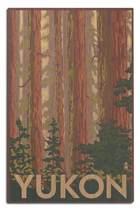 Amazon Com Yukon Canada Forest View 12x18 Wood Wall Sign Wall