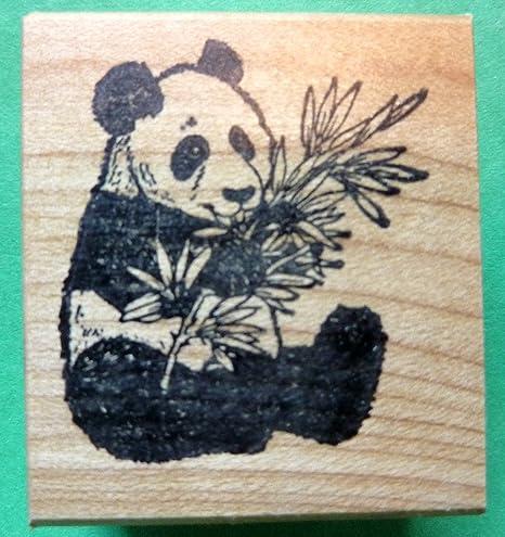 Amazon.com: Oso Panda sellos de goma, Wood Mounted: Arte ...