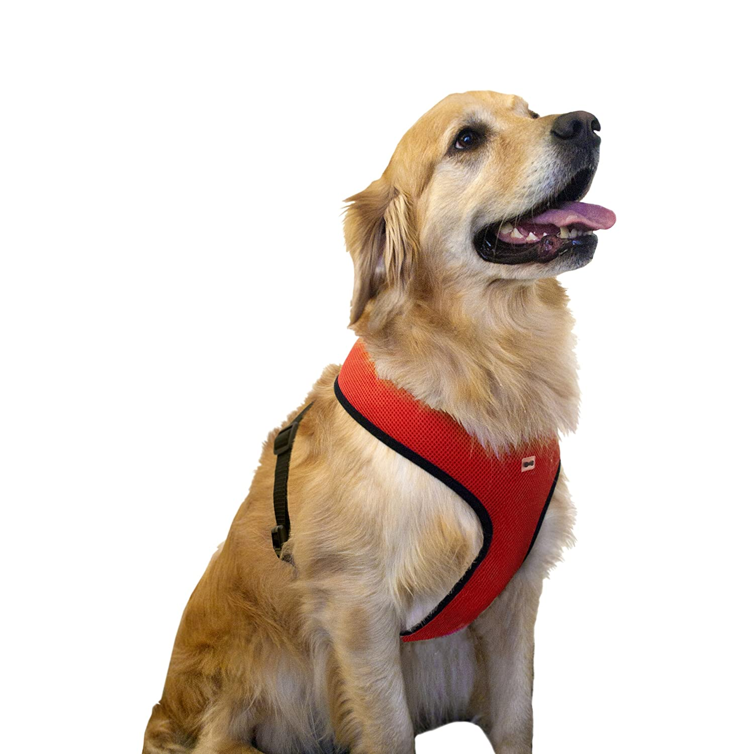 Dog Body Harness (Red, XX-Large)