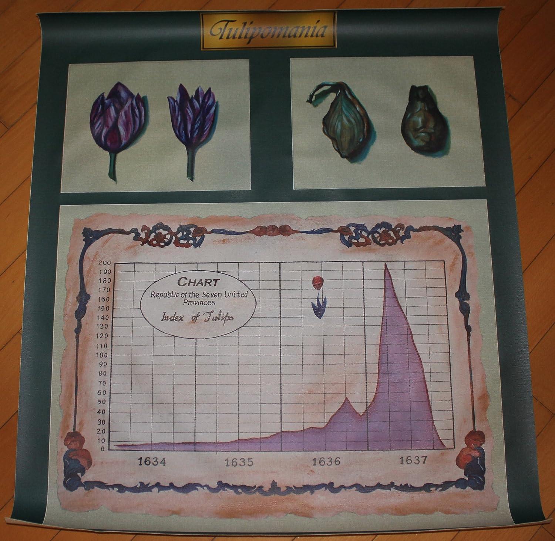 Tulip Mania Graph
