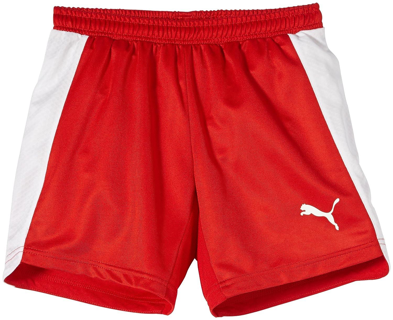 Puma Evospeed Indoor Shorts - Pantalones cortos de balonmano color rojo/blanco talla 2XL 701607 01