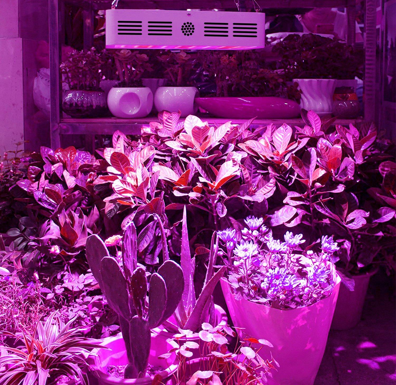 Amazon.com : King Plus 1000w LED Grow Light Double Chips Full ...