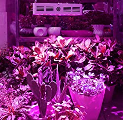 LED Grow Light - Christmas Gift Ideas For Mom