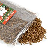 Mealworms - Dried, Tasty, High-Protein Treats for Chickens, Wild Birds, Reptiles, and Small Mammals - 5 lb. bag
