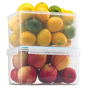 Komax Biokips Large Food Storage Container 155oz. (set of 2) - Airtight, Leakproof With Locking Lids - BPA Free Plastic - Microwave, Freezer and Dishwasher Safe - Great For Fruit & Vegetables