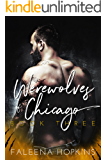 Werewolves of Chicago: The Hero (Chicago Wolf Shifters Book 3)