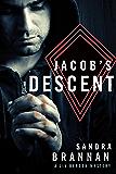 Jacob's Descent (A Liv Bergen Mystery Book 6)