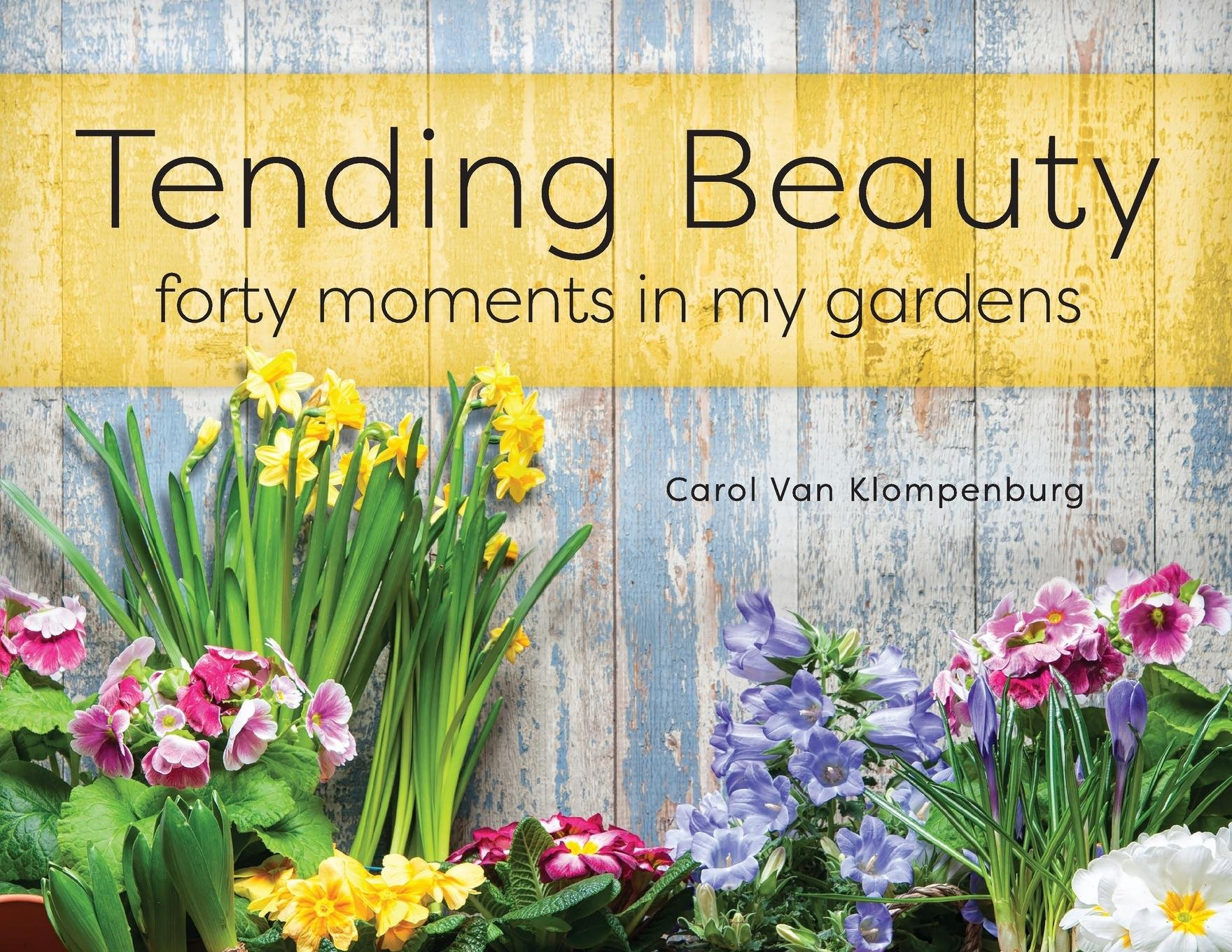 Download Tending Beauty: Forty Moments in My Gardens pdf