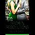 Broken Resolutions (Lovestruck Librarians)
