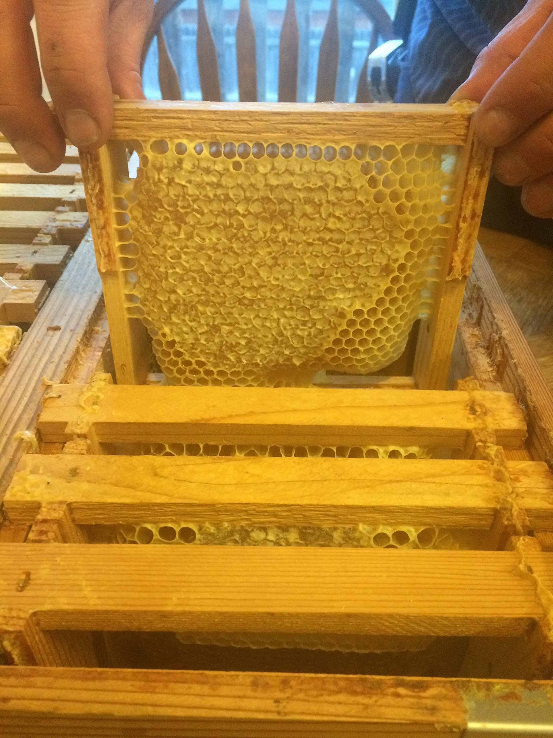 Eco Bee Box full medium pine comb super/box. Holds 26 foundationless frames. Comes assembled by Eco Bee Box Utah Hive Full (Image #1)