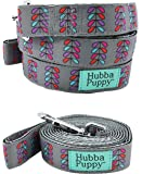 Hubba Puppy Retro Pretty Petals Large Nylon Dog, Large, 1 in by 6 feet , Grey With Purple Pink and Teal
