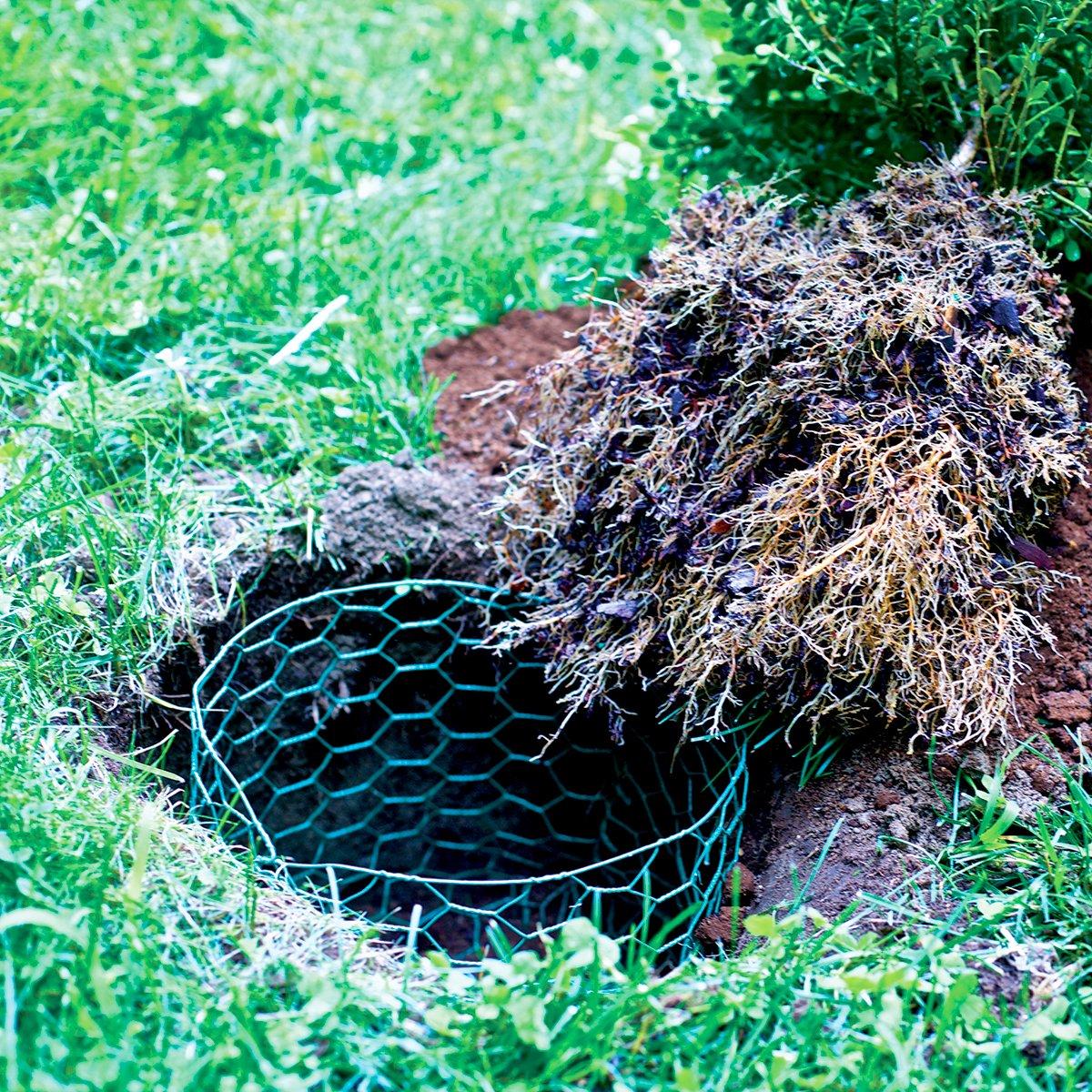 Garden Zone 24inx25ft 1in Green Vinyl Poultry Netting by Origin Point (Image #5)