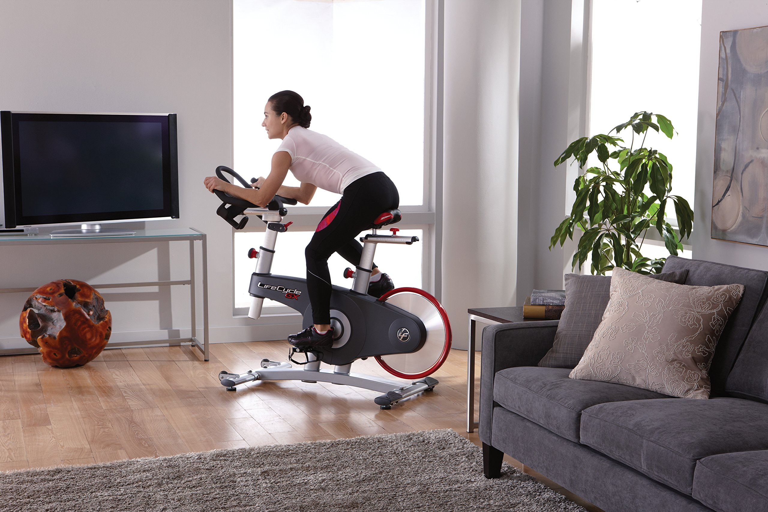 Life Fitness Lifecycle GX Group Exercise Bike with Console by Life Fitness (Image #4)