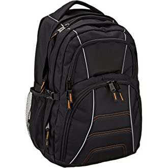#9 AmazonBasics Backpack for Laptops up to 17-inches