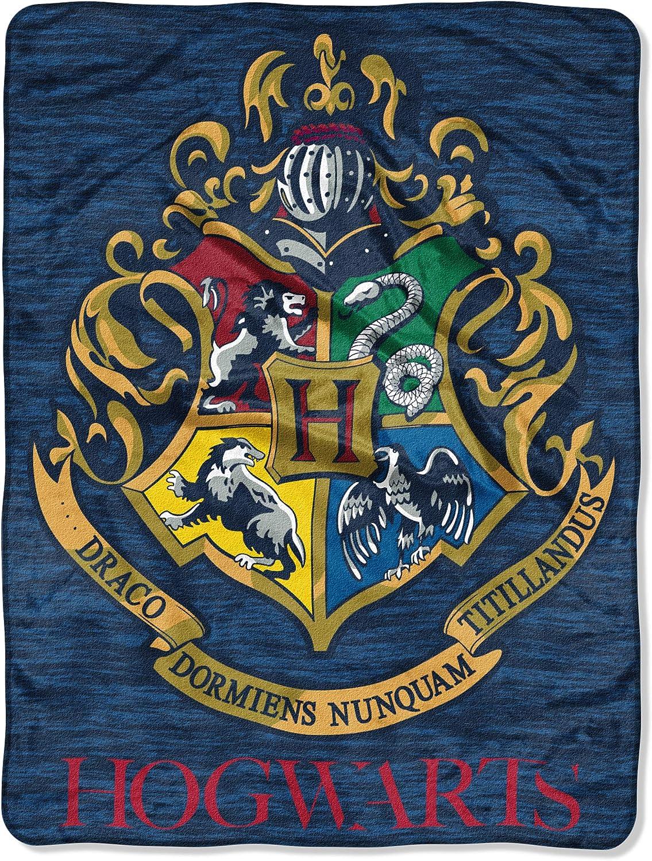 Harry Potter Wizard Class Micro Raschel Throw Blanket