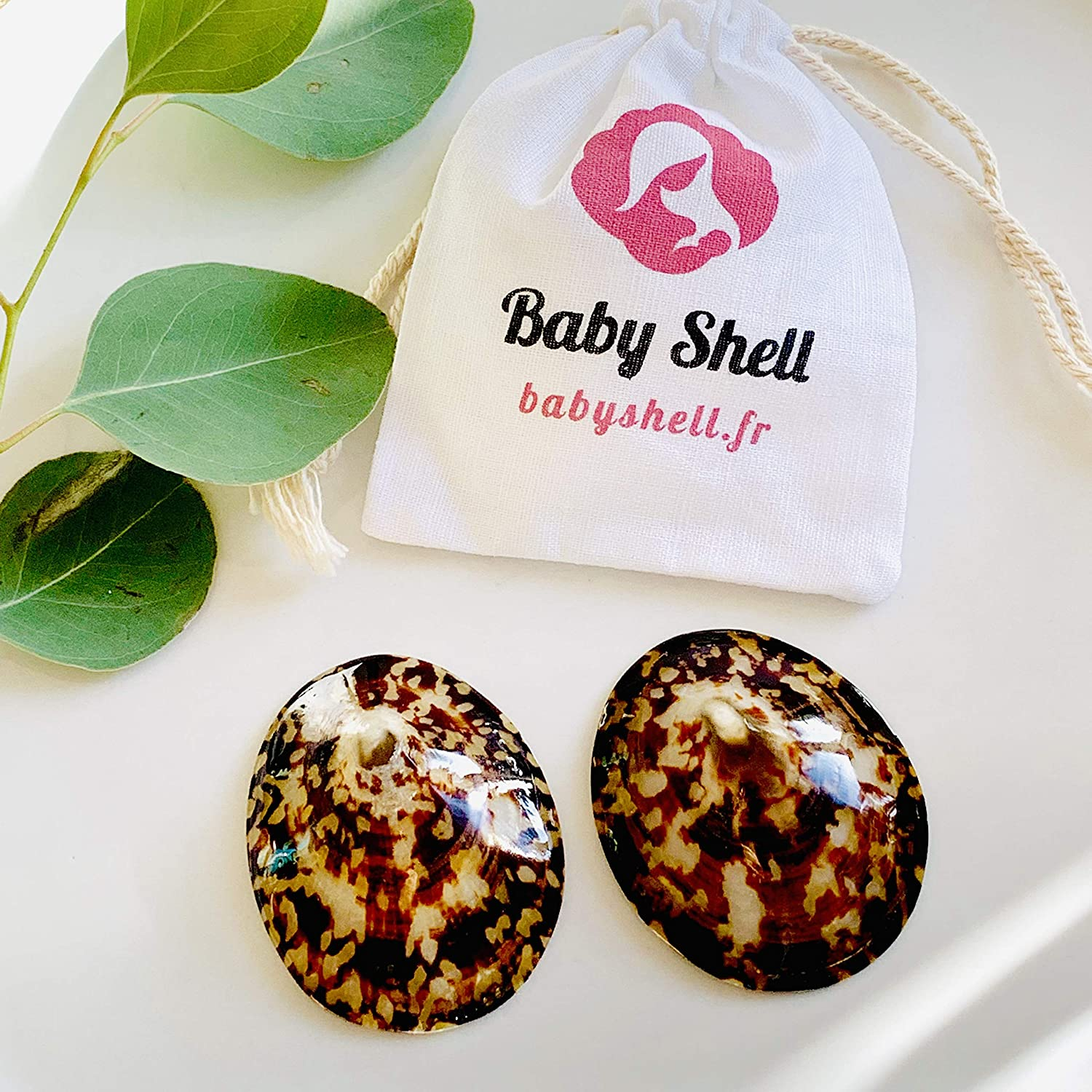 T.Small BABY SHELL Coquillages dallaitement 100/% naturels