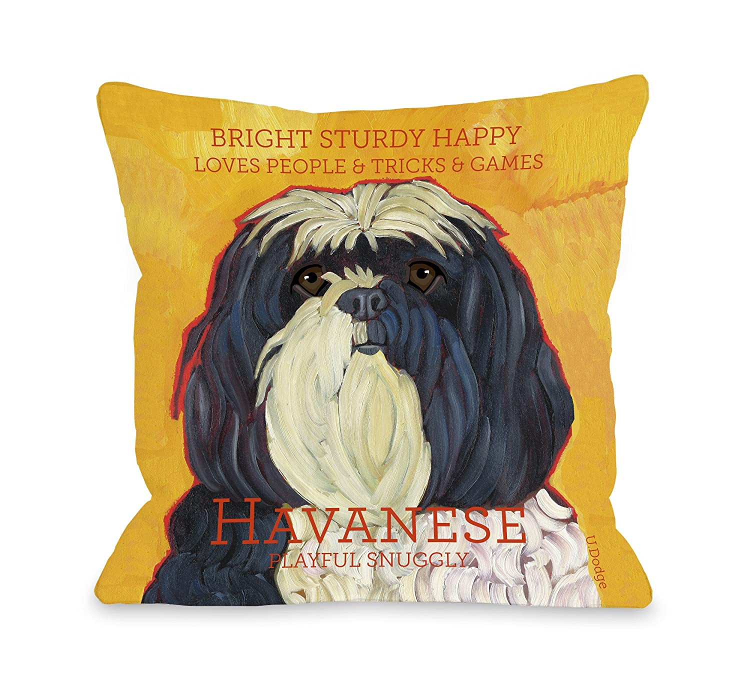 26 by 26-Inch Bentin Pet Decor Havanese 1 Pillow, 26 by 26-Inch