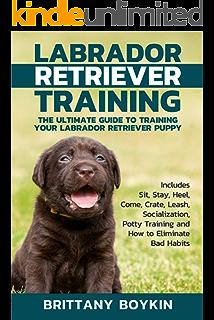 Retriever Troubleshooting: Advanced Retriever Training & - download pdf or read online