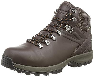 Berghaus Explorer Ridge Plus GTX Boot, Chaussures de Randonnée Hautes Homme, Marron (Brown/Leather Brown V32), 45 EU