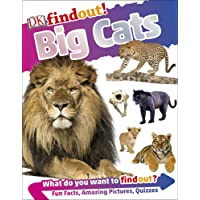 Big Cats: DKFindOut!