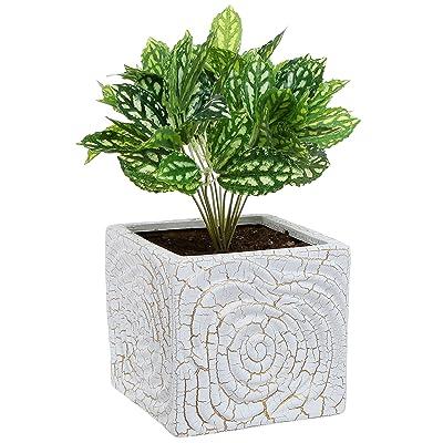 MyGift 6 Inch Decorative Spiral Design Square White Ceramic Plant Flower Container Pot/Windowsill Planter: Garden & Outdoor