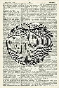 Apple Art Print – Fruit Art Print - Food Illustration - Kitchen Art Print - Vintage Art – Vintage Dictionary Art Print – Food Artwork - Book Page Print – Vegetarian Gift 232KLD