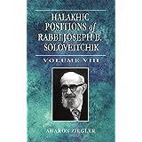 Halakhic Positions of Rabbi Joseph B. Soloveitchik (Volume 8)
