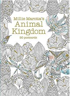 Millie Marottas Animal Kingdom Postcard Box 50 Postcards A Marotta Adult