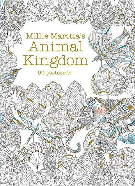 Millie Marottas Animal Kingdom Postcard Box 50 Postcards Marotta Adult Coloring