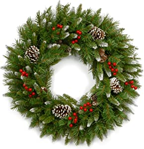National Tree Company Pre-lit Artificial Christmas Wreath | Flocked with Mixed Decorations | Frosted Berry-24, 24-Inch