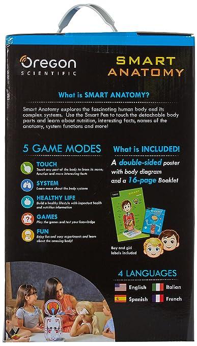Amazon.com: Oregon Scientific SA218 Smart Anatomy Educational Human ...