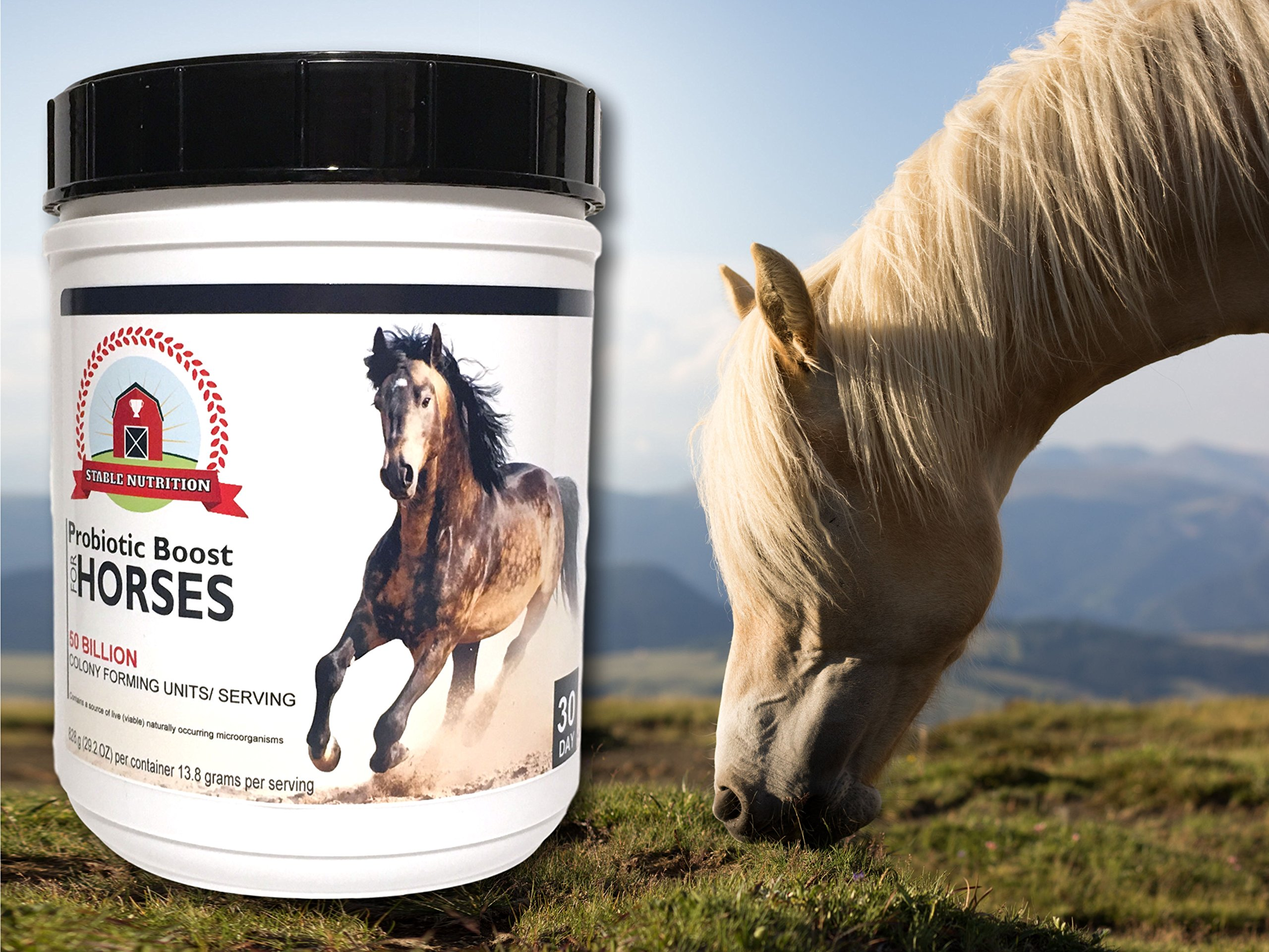 Stable Nutrition PROBIOTIC BOOST for Horses (30 Day) Equine Digestion Support Supplement for After Deworming and During Antibiotics - Digestive System Recovery Aid by Stable Nutrition (Image #3)