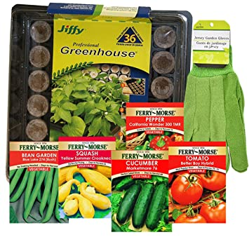 Jiffy Greenhouse Vegetable Garden Seed Starting Kit, 7 Items