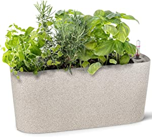 Windowsill Rectangular Self Watering Herb Garden | Large Plastic Planter Pot for Herbs, Greens, Flowers, House Plants and Succulents | Indoor/Outdoor Flower Pot (Stone Color)