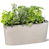 Windowsill Rectangular Self Watering Herb Garden | Large Plastic Planter Pot for Herbs, Greens, Flowers, House Plants and Suc