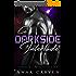 A Darkside Interlude: Darkstar Mercenaries Book 0.5 (English Edition)