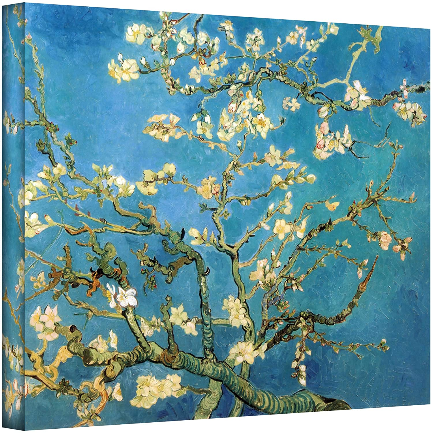Artwall Almond Blossom By Vincent Van Gogh Gallery Wrapped Canvas Art 36 By 48 Inch Oil Paintings Posters Prints