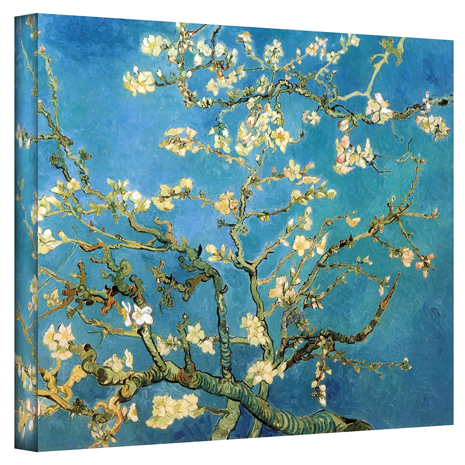 Amazon.com: Art Wall Almond Blossom by Vincent Van Gogh Gallery ... for Almond Blossom Van Gogh Poster  174mzq