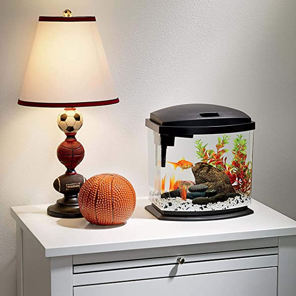 2.5-Gallon-Fish-Tank
