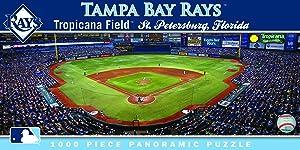 MasterPieces MLB Tampa Bay Rays Stadium Panoramic Jigsaw Puzzle, 1000-Piece