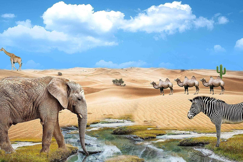 9x6FT Elephant Zebra Background African Animals Desert Blue Sky Backdrop for Photography Photo Booth Studio Props LHLU248